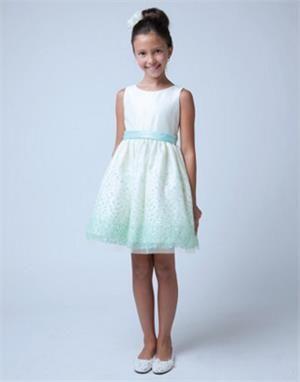 Shimmer Flocked Overlay Dress | eFavorMart