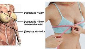 Perkier breasts