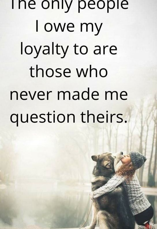 Quotes About Loyalty And Betrayal New Short Loyalty Quotes  Loyalty Quotes  Pinterest  Loyal Quotes