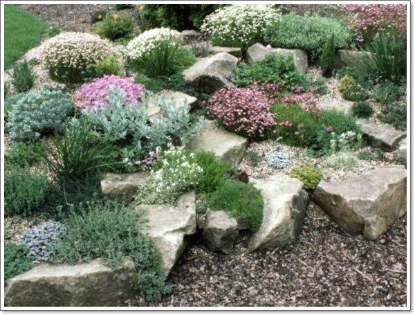 Rock Garden Photos More