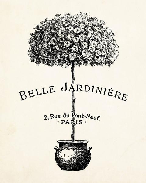 Belle Jardiniere Topiary - Botanical Print