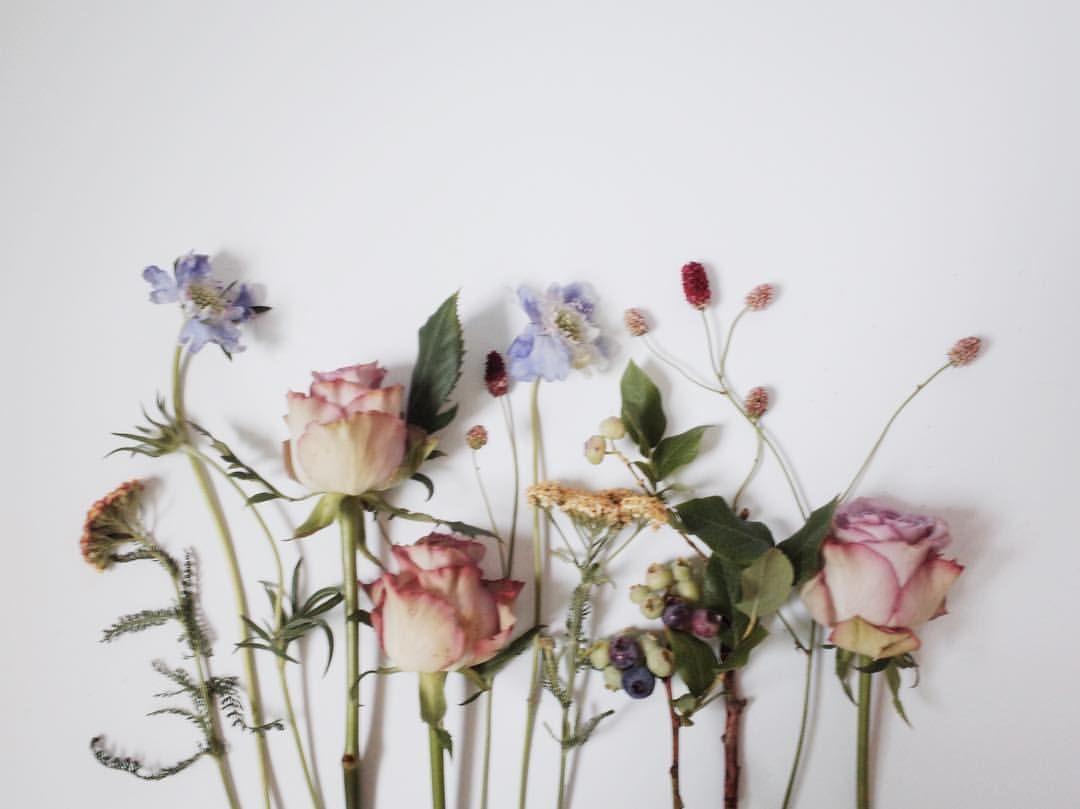 - 고민은 길지않게, 🌿 . . . . . . . #flowergram #design #flowers #rose #florist #플라워 #꽃모닝 #디자인 #플라워그램 #플로리스트 #광교