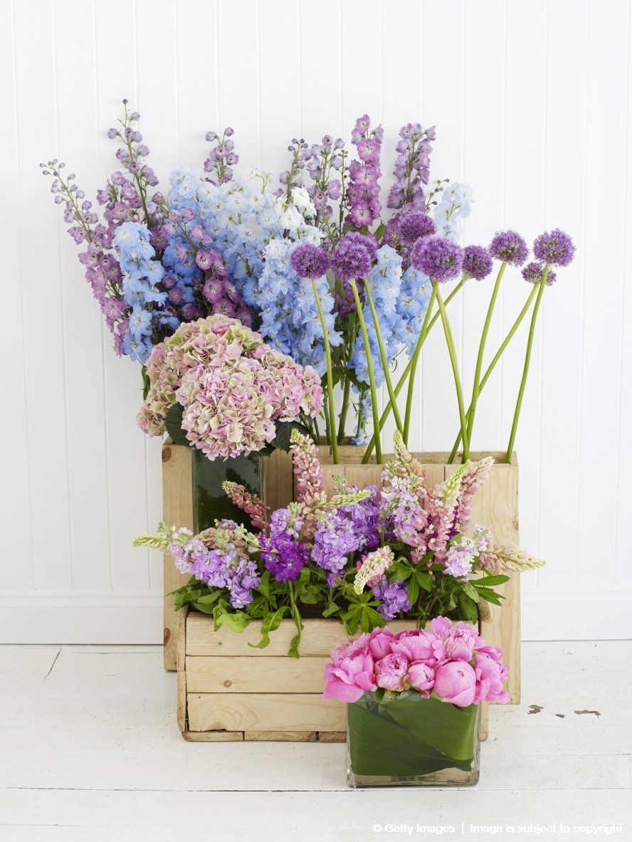 Image detail for -Flowers arranged in wooden containers, including hydrangea, delphinium, allium, and rose
