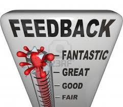 We hebben de feedback op het verslag bestudeerd.