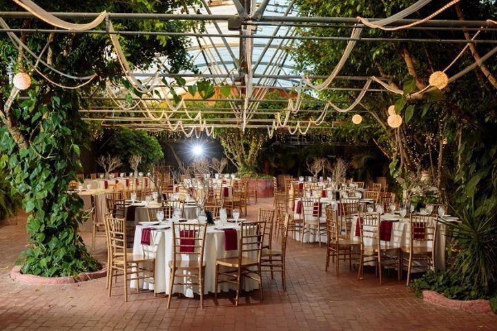 Boojum tree hidden gardens garden wedding venue outdoor