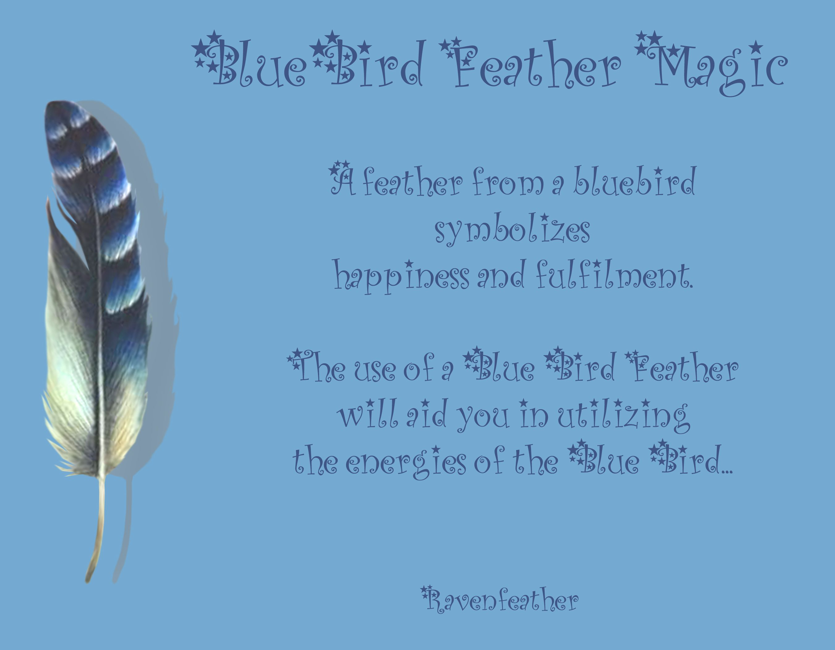 What does it mean when you find a black feather you are being what does it mean when you find a black feather you are being healed on every level of the body mind and soul your energy is being heightened a biocorpaavc Images