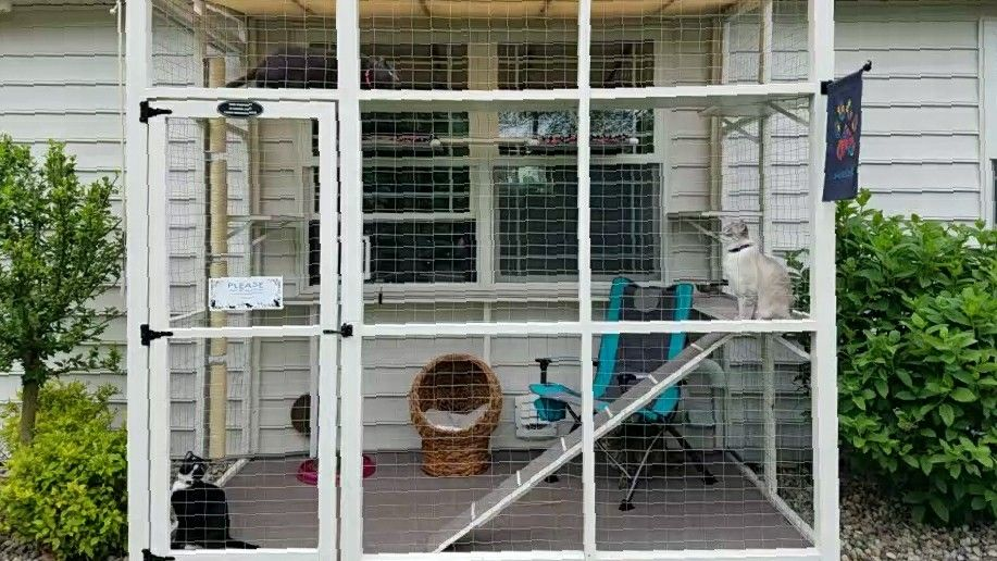This 9' x 6' catio covers window where cats access the