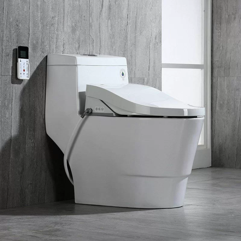 Dual Flush Elongated One Piece Toilet With Bidet Seat Seat