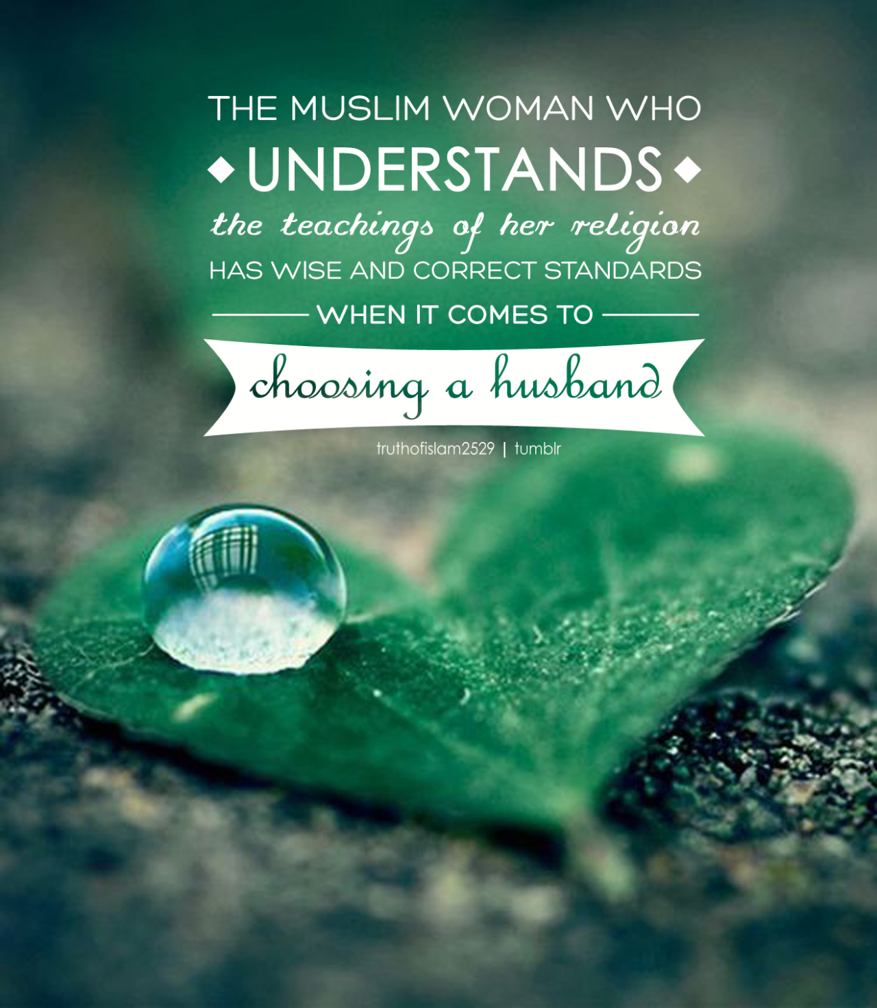 Best Islamic Quotes About Fiance: Sisters, Choose Your Husband According To The Religion