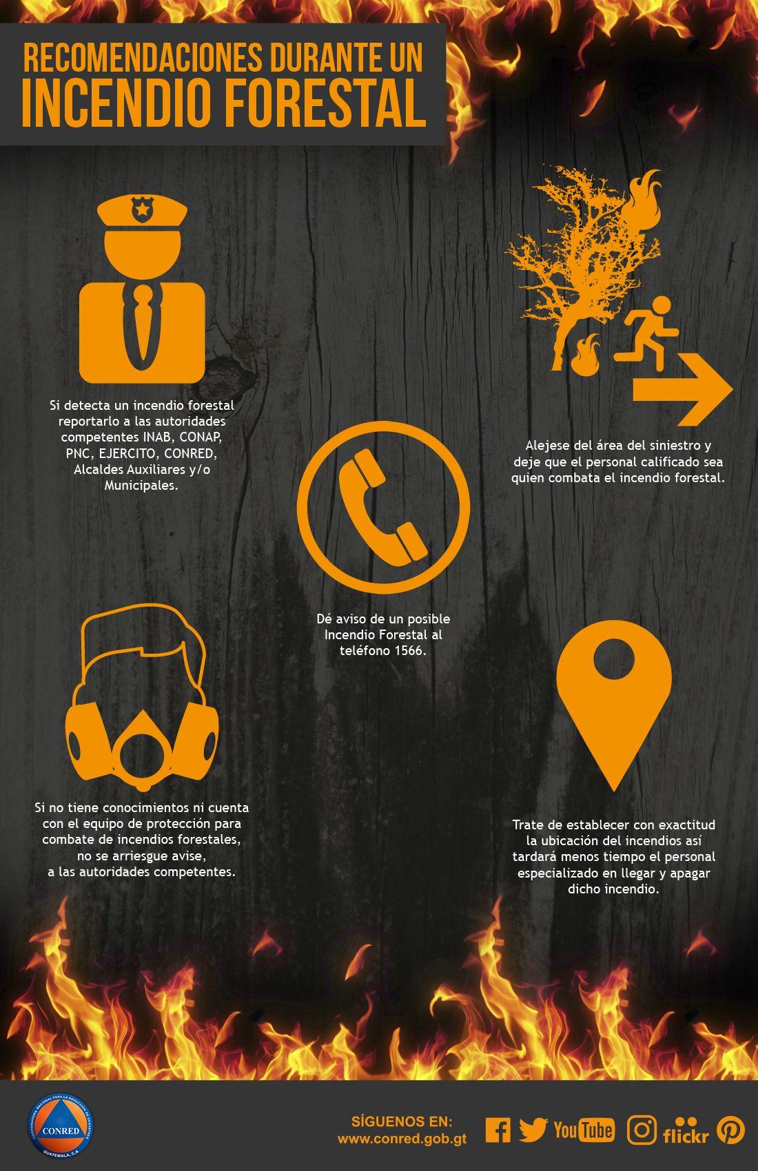 Recomendaciones Durante Un Incendio Forestal General