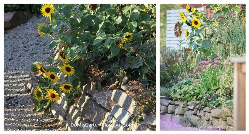Beete anlegen: Inspirationen für Ihre Gartengestaltung