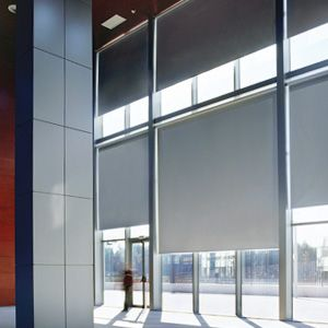 Purchase Blinds And Shades Roller Shades Blackout Roller Shades Motorized Window Treatment