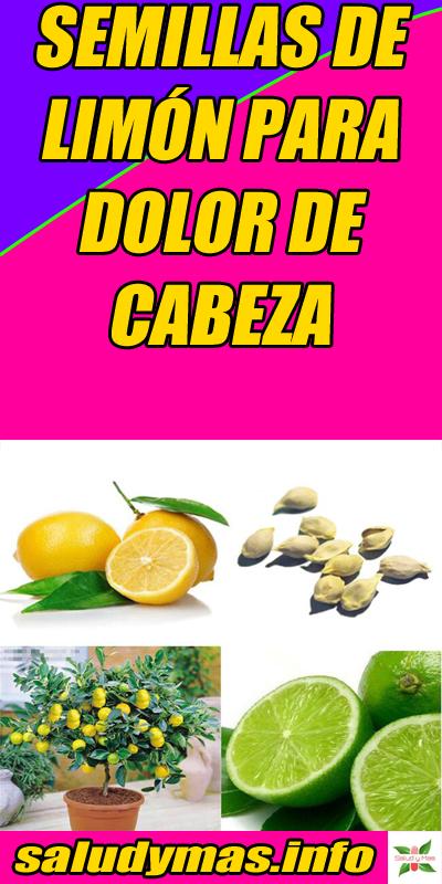 Semillas De Limon Para Dolor De Cabeza Semillas De Limon Dolores De Cabeza Cura Para El Dolor De Cabeza