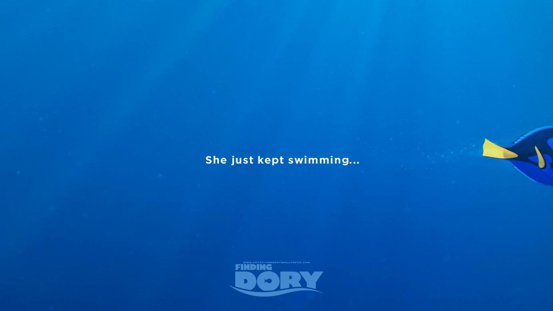 Best Finding Dory Wallpapers Hd Hd Picturez 1801 1200 Finding Dory Wallpapers 36 Wallpapers Adorable Wallpapers Dory Finding Dory Finding Dory Movie