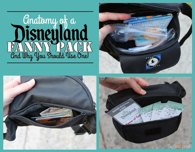 Anatomy Of A Disneyland Fanny Pack And Why You Should Bring One