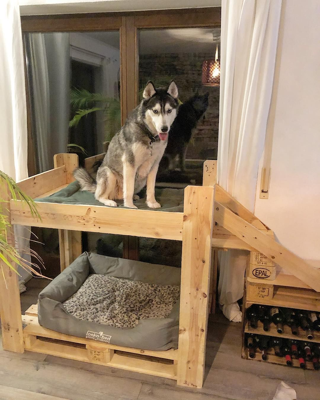 And The Dog House Has Stairs Indoordoghouse Indoor Cozydog