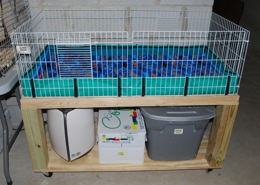 Awesome ideas for guinea pig hutch and cages guinea pig for Simple guinea pig cage