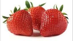 Bildergebnis für Strawberries