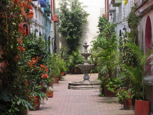 Courtyard Mexico City
