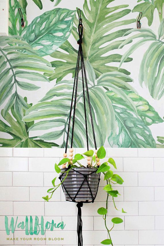 Wallpaper With Monstera Leaves Pattern Removable Wallpaper Etsy Leaf Wallpaper Wall Wallpaper Removable Wallpaper