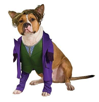 Joker Pet Costume Pet Costumes Cute Dog Costumes Batman Dog