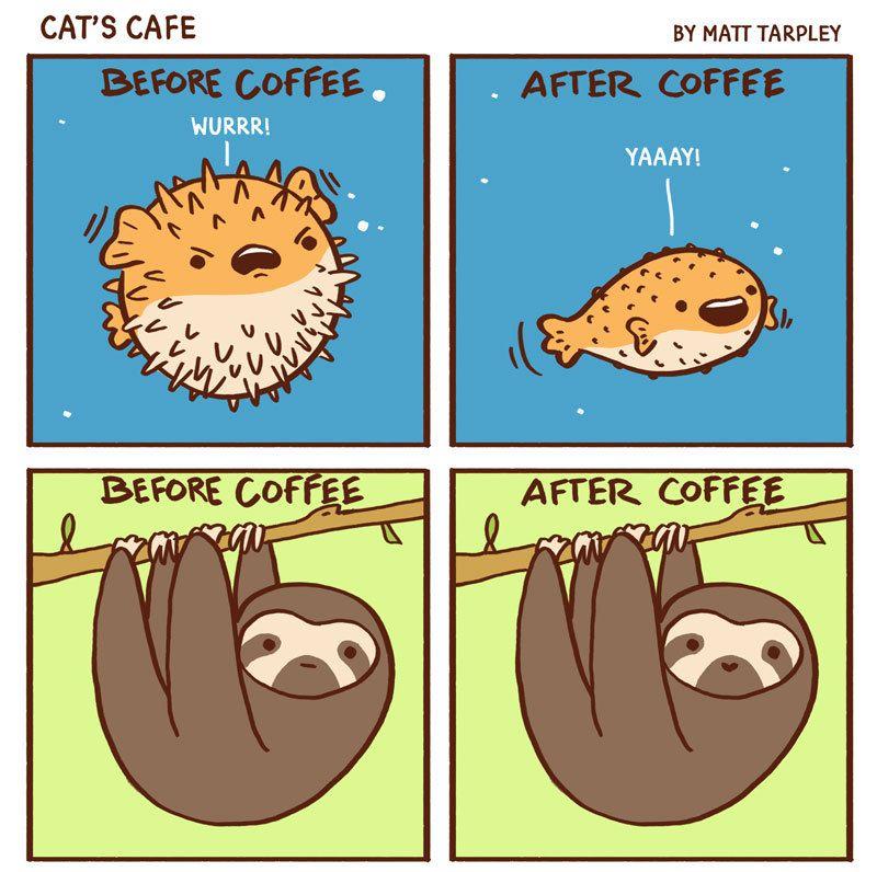 Kiwi kiwi kiwi kiwi kiwi kiwikiwi kiwi kiwikiwi kiwi kiwikiwi kiwi kiwikiwi kiwi kiwikiwi ... - #animals #beforecoffee #cafe #caffiene #catscafe #coffee #coffeetime #comics #cute #goodmorning #kiwi #puffer #sloth #webcomic #webtoons #whichareyou #wholesome