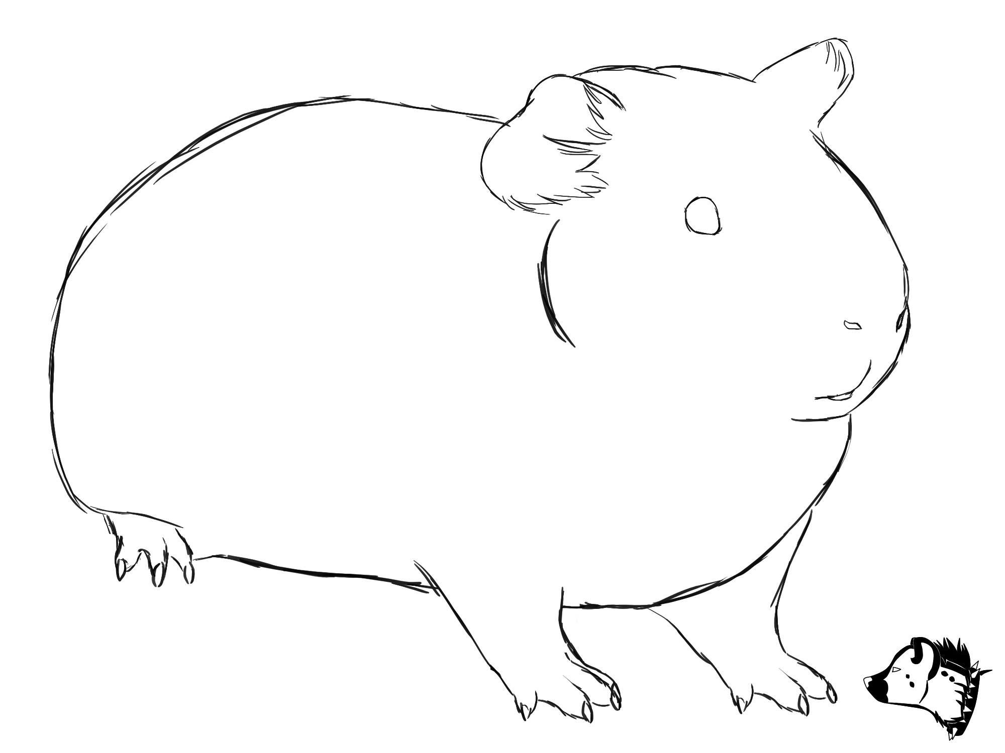 Sketch drawing from GuineaPig Town - would make a cute embroidery ...