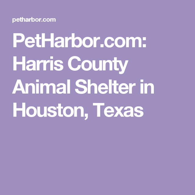 Petharbor Com Harris County Animal Shelter In Houston Texas Animal Shelter Find Pets Harris County