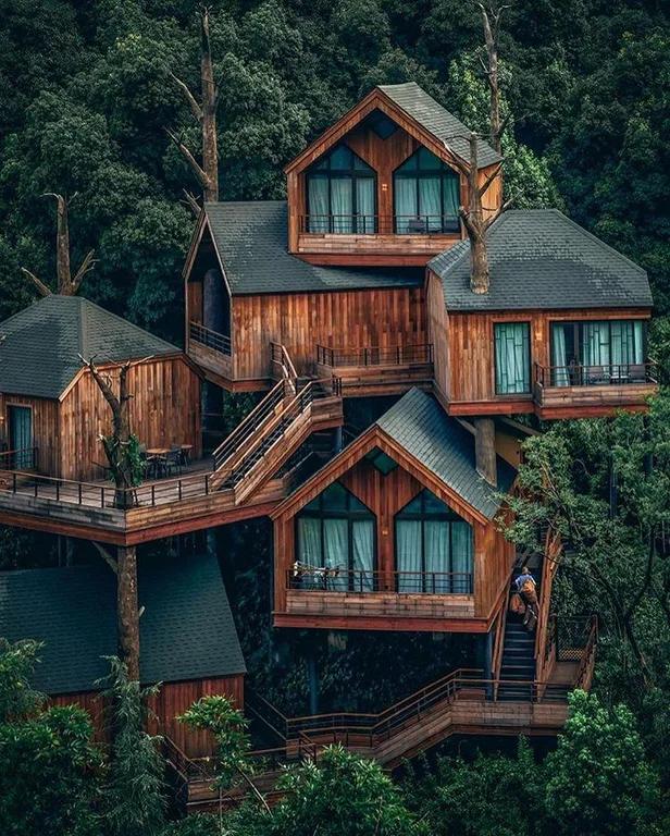 A Treehouse In Hangzhou China Pics Beautiful Tree Houses Tree House Designs Tree House