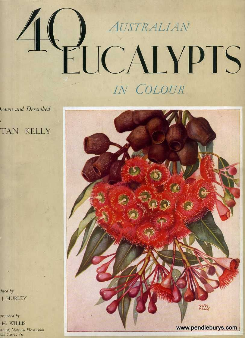 1949....40 AUSTRALIAN EUCALYPTS IN COLOUR drawn and ...