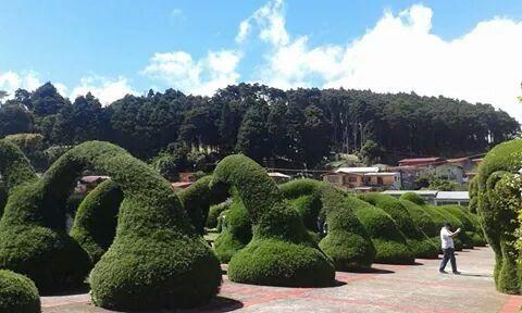 Parque de Zarcero. Zarcero's Park. Costa Rica