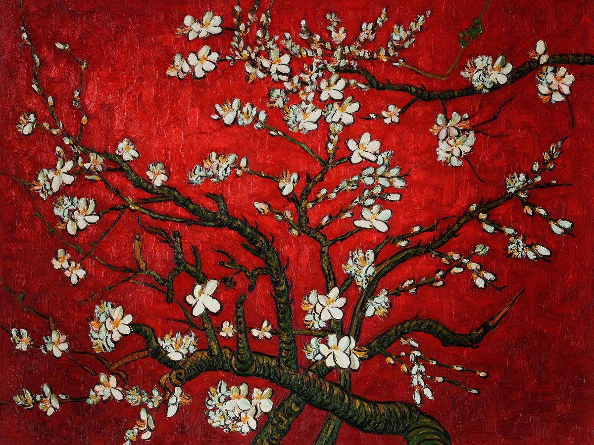 branch texture....Branches of an Almond Tree in Blossom ... for Almond Blossom Van Gogh Poster  146hul