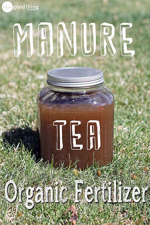 Pin By Jill Nystul One Good Thing On How Does Your Garden Grow Manure Tea Compost Tea Manure
