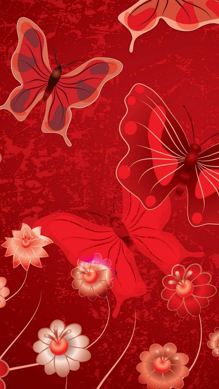 Wallpaper | Butterfly wallpaper, Cellphone wallpaper ...