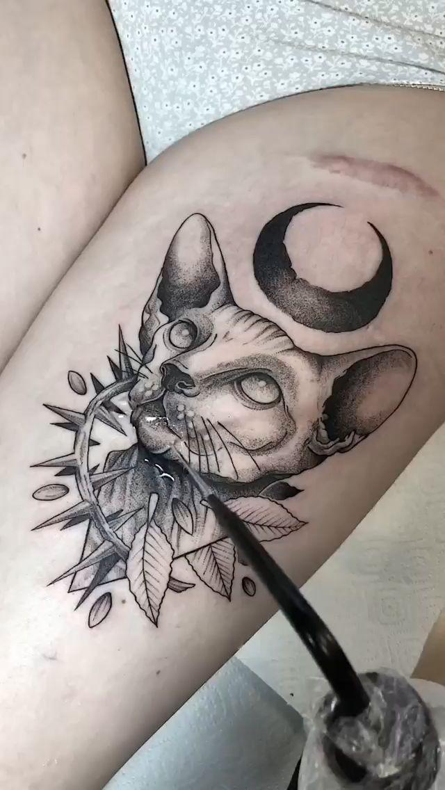 Ориентальная кошка сфинкс тату графика 😈 Настя Злюка | оригинальные рисунки скетчи татуировки