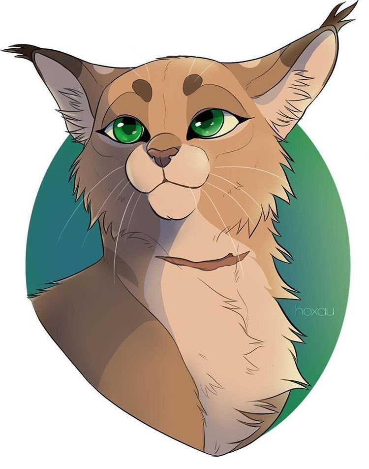 Pin By Ashley Lutin On Warrior Cats With Images Warrior Cats