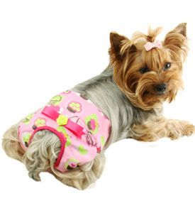Female Dog Diaper Panties Dog Dog Pampers Reusable Dog Diapers
