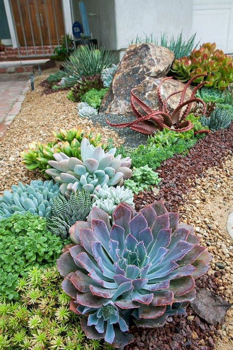 Wonderful Front Yard Landscaping Ideas Succulent Garden Design Succulent Landscape Design Rock Garden Landscaping