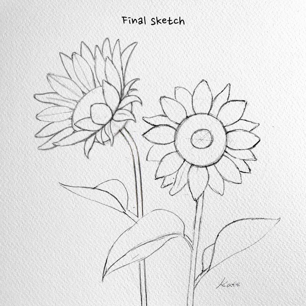 How To Draw Flowers Step By Step For Beginners How To Draw Flowers Watercolor Pencil How To Draw Flower Drawing Sunflower Drawing Flower Drawing Tutorials