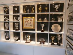 Trophy Wall Display