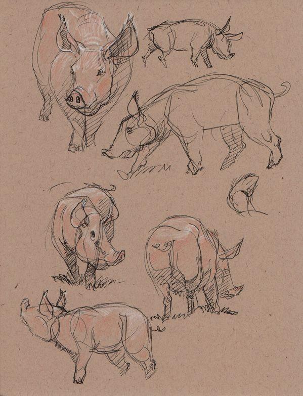 Pig Invasion at Disney by davidsdoodles.deviantart.com on ...