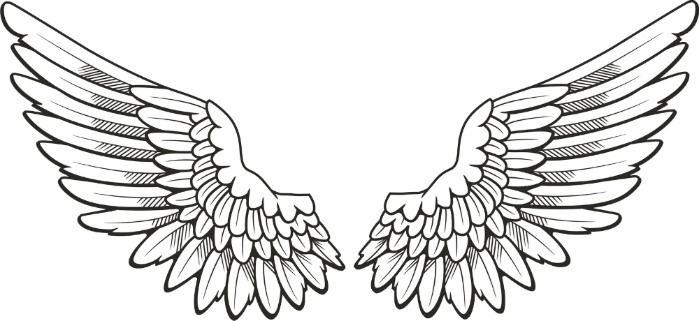 20+ Gambar Sayap Malaikat, Burung, Dan Bidadari Keren di