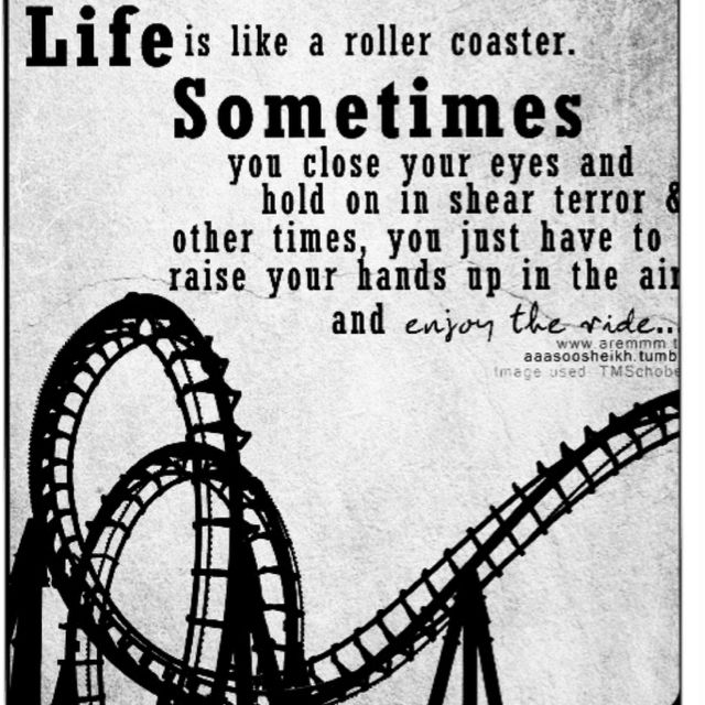 Quotes about roller coasters