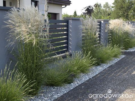 Latest Garden Fence Decoration Ideas #modernlandscapedesign