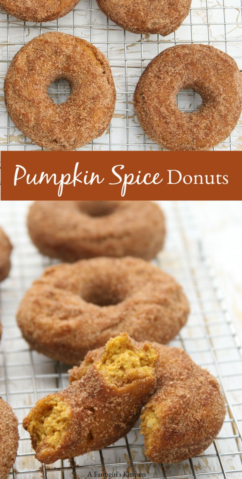 Old-Fashioned Pumpkin Doughnuts | A Farmgirl's Kitchen