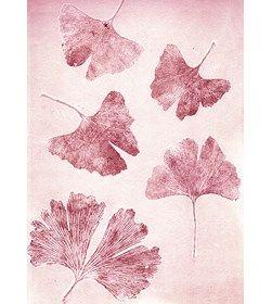 Botanisk tryk Gingo sorbet A5 - Pernille Focarelli