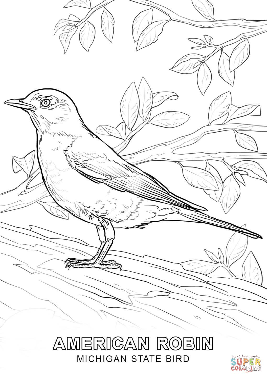 Oct 7 8 Michigan State Bird Bird Coloring Pages Coloring