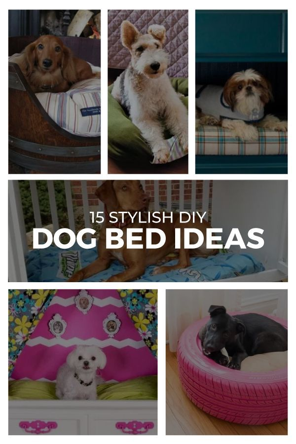 Lovely 15 Ingenious DIY Dog Beds That Are High On Style
