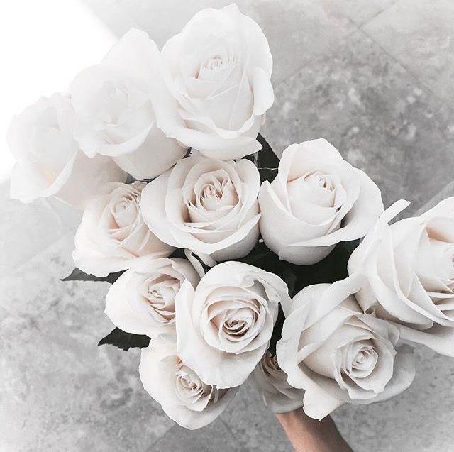 ☽..♡ // @charlizewatches | Flowers + Plants | Pinterest | Blumen