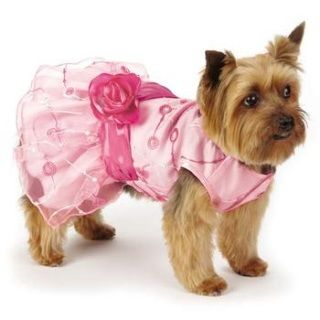 Elegance Rosette Dog Dress by East Side Collection will make any pampered pup feel like a fairy princess.   A pastel pink satin dress is topped by a delicate chiffon layer Chiffon overlay is adorned with embroidery and sequins A dark pink satin sash with matching rosette adds the finishing touch Velcro® front closure and a high-cut, stay-dry belly for a comfy fitWhy We Love It:  This frothy swirl of femininity flaunts fancy details! $24.99